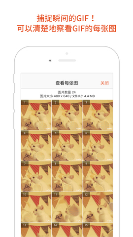 GIF Viewer_pic4