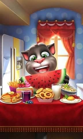 我的汤姆猫_pic3
