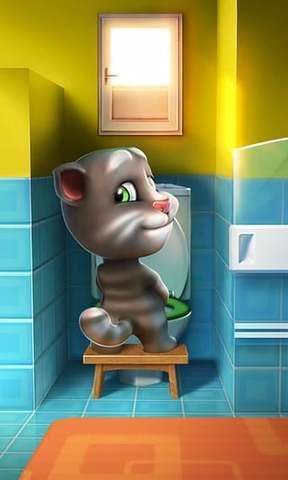 我的汤姆猫_pic2