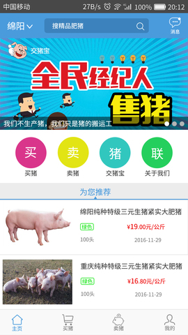 交猪宝_pic3