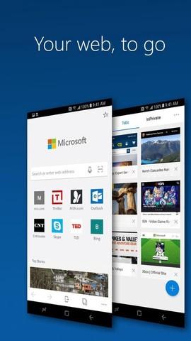 Microsoft Edge_pic3