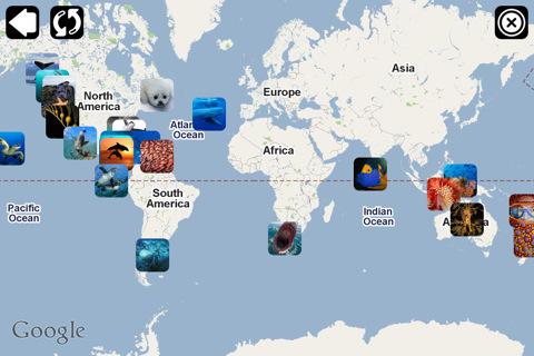 【海洋的遭遇:海洋野生动物摄影探索下载|海洋的遭遇