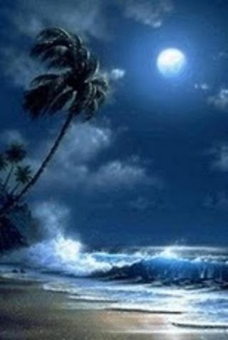 标签:动态壁纸天蓝色手掌自然的色彩夜星月光 应用截图 综合评分 0分