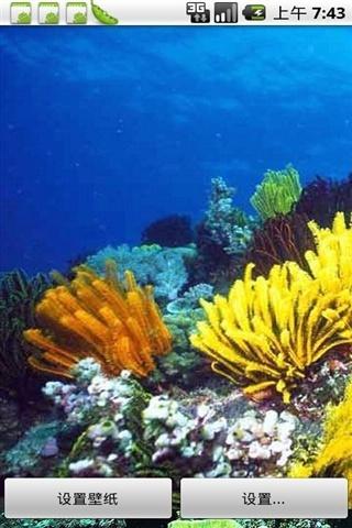 【海底世界动态壁纸下载】海底世界动态壁纸官方下载