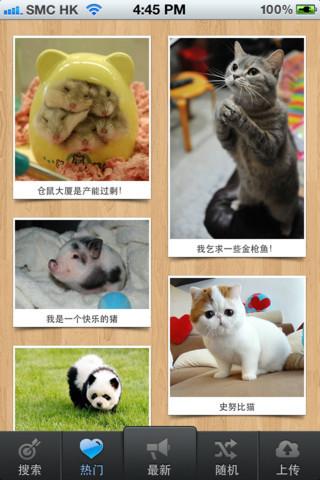 【动物萌图下载|动物萌图官方下载】iphone版下载