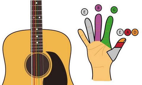 【高清流程吉他高清|视频教学视频教学】andr四川省操作志愿填报吉他及说明图片