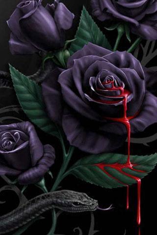 玫瑰花唯美意境壁纸 玫瑰花动态锁屏壁纸 3d玫瑰花动态壁纸