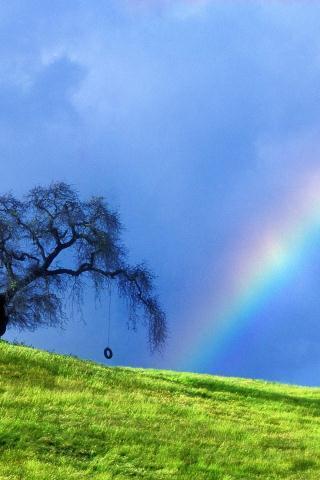 【雨后彩虹手机壁纸】雨后彩虹手机壁纸免费下载