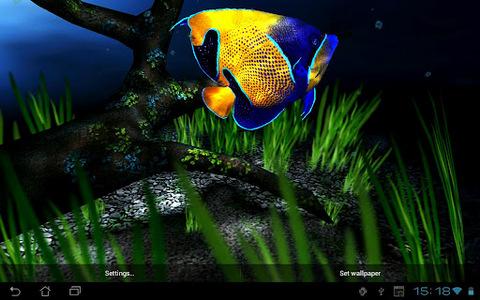 动物主题 我的3d小鱼动态壁纸