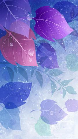 星空手机壁纸 iphone 5s风景壁纸桌面 自然景色壁纸 春季唯美花卉