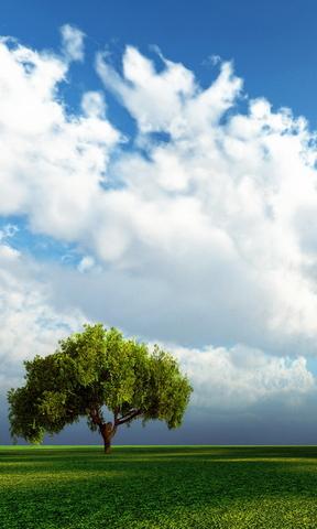 蓝天白云手机壁纸