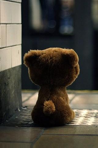 【等待的小熊手机壁纸】等待的小熊手机壁纸免费下载