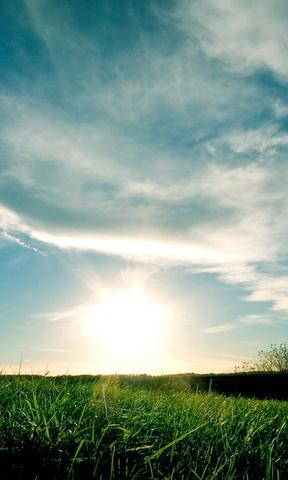 青山绿水手机壁纸 高清风景安卓手机壁纸  草原阳光手机壁纸 简介