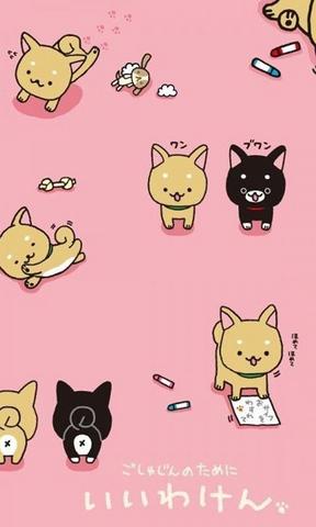 小毛驴卡通壁纸 cc猫可爱卡通手机壁纸