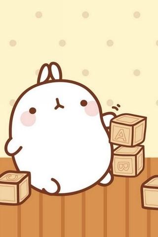 所有可爱胖兔图片大全