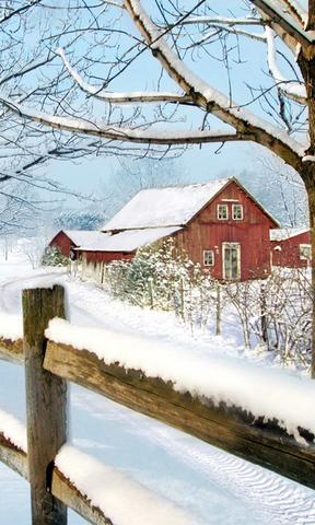 雪中小屋手机壁纸