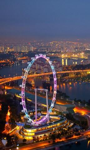城市摩天轮夜景手机壁纸