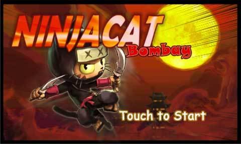 NinjaCat Bombay_pic1