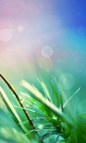 高山流水手机壁纸 清新护眼的自然风光手 春天的风景手机壁纸 自然