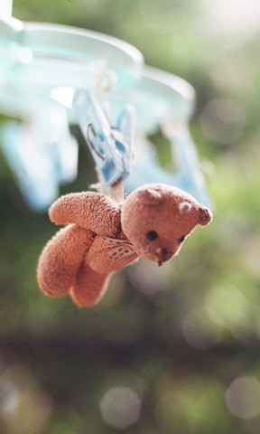 【小熊的梦想手机壁纸】小熊的梦想手机壁纸免费下载