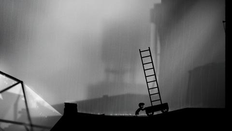 地狱边境(LIMBO Game)_pic4