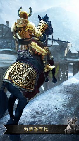 骑士对决:荣耀之巅_pic2