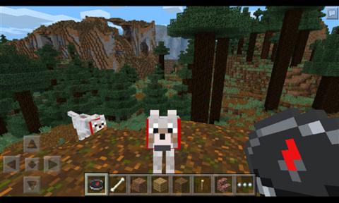 我的世界(Minecraft)_pic4