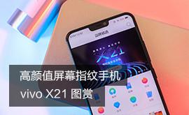 满身科技 一见倾心 vivo X21图赏