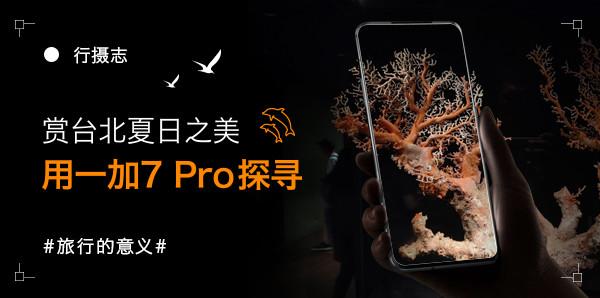 行摄志:赏台北夏日之美 用一加7 Pro探寻旅行的意义